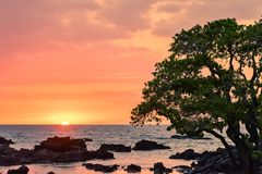 Hawaiian Sunset Glow Stock Image