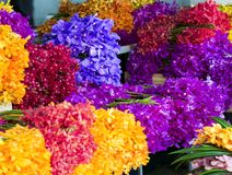 Colorful orchids flowers bouquet in flower shop selling variety. Of flowers at the flower market ready for distribution in thailand Stock Photography