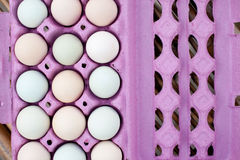 Colorful Organic Eggs Background Royalty Free Stock Photography