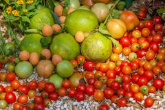 Colorful organic fruits and vegetables on the ground, ripe and fresh, tomatoes, pomelo, nut, marian plum with flowers. Top view. stock image