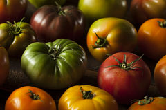 Colorful Organic Heirloom Tomatoes Stock Photography