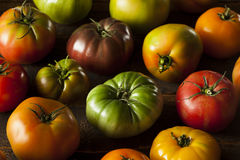 Colorful Organic Heirloom Tomatoes Royalty Free Stock Photography