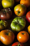 Colorful Organic Heirloom Tomatoes Royalty Free Stock Photos