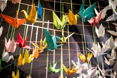 Colorful origami birds fly with rope Royalty Free Stock Photos