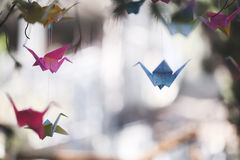 Colorful origami cranes Stock Photos