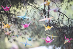 Colorful origami cranes Stock Photography