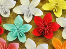 Colorful origami flowers Stock Photography