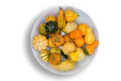 Colorful ornamental autumn gourds centerpiece Stock Photography