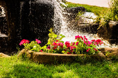 Colorful Ornamental Pool Royalty Free Stock Images