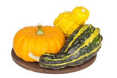 Colorful ornamental pumpkins and gourds on white backgr. Colorful ornamental pumpkins and gourds isolated on white background Royalty Free Stock Photos
