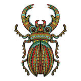 Colorful Ornate Giant Stag Beetle Royalty Free Stock Photos