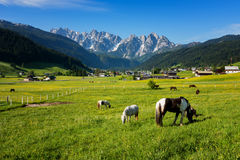 Colorful outdoor scene in the Austrian Alps. Summer sunny day in the Gosau village on the Grosse Bischofsmutze mountain, Austria. Colorful outdoor scene in the Stock Photo