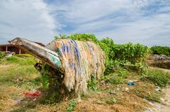 Colorful overgrown and broken wooden fishing boats with nets and traps in lush environment, coast of Gambia, West Africa Royalty Free Stock Image