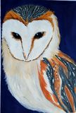 Colorful owl on dark blue background. Colorful owl on dark blue, background, feather, bird, wild, guashe, watercolor, oil, paper stock illustration