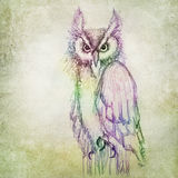 Colorful owl drawing Royalty Free Stock Photos