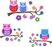 Colorful owls. Background illustration of colorful cute owls Royalty Free Stock Image