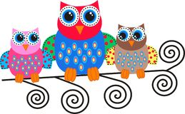 Colorful owls. A illustration of three colorful owls Royalty Free Stock Images