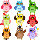Colorful Owls. Set of Colorful Owls with different characters Stock Image