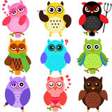Colorful Owls. Set of Colorful Owls with different characters Royalty Free Stock Photography