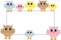 Colorful owls with a placard. 