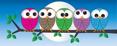 Colorful owls sitting on a branch. 