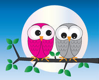 Colorful owls sitting on a branch stock illustration