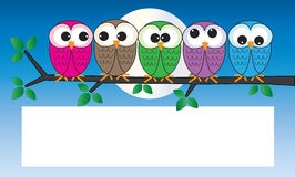 Colorful owls sitting on a branch Royalty Free Stock Photo