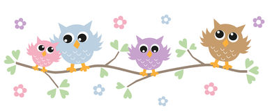 Colorful owls in a tree. Colorful owls Royalty Free Stock Photography