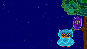 Colorful owls. Two Owls in flat colors at night Royalty Free Stock Photo
