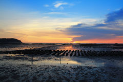 Colorful of oyster farm with sunlight reflection. At AngSila district in Chonburi, Thailand Royalty Free Stock Photography