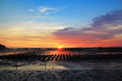 Colorful of oyster farm with sunset and reflection. At AngSila district in Chonburi, Thailand Royalty Free Stock Images