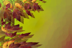 Colorful Page of Fall Leaves. One Side of Colorful Fall Leaves With Space for Text on Right Side royalty free stock photography