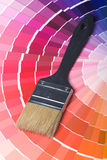 Colorful Paint Color Swatches Stock Image