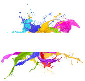 Colorful paint splash. Over white Stock Images