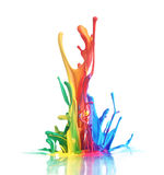 Colorful paint splashing. On white royalty free stock images