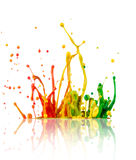 Colorful paint splashing. On white background stock photo