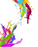 Colorful paint splashing. On white background royalty free stock photo