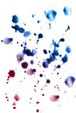 Colorful paint splatter. Colorful watercolor paint splatter isolated over white stock images