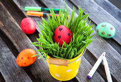 Colorful painted Easter egg on a fresh green grass Royalty Free Stock Photos