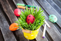Colorful painted Easter egg on a fresh green grass Stock Photo
