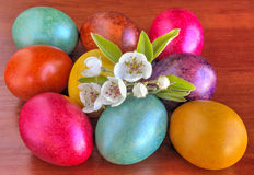 Colorful painted Easter eggs and fresh Spring flowers on wooden background Stock Photos