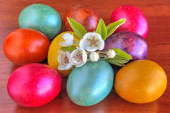 Colorful painted Easter eggs and fresh Spring flowers on wooden background Royalty Free Stock Photo