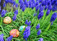 Colorful painted easter eggs on a green grass stock image