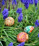 Colorful painted easter eggs on a green grass royalty free stock photography