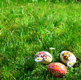 Colorful painted easter eggs on a green grass royalty free stock image