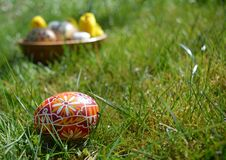 Colorful painted easter eggs on a green grass royalty free stock photos