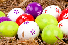 Colorful painted easter eggs hidden in a nest of straw Stock Photo