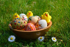 Colorful painted easter eggs and little sheep on a green grass royalty free stock photos