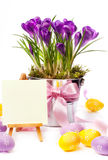 Colorful painted easter eggs and spring flowers stock photo