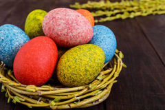 Colorful painted eggs in a nest of twigs of willow on a dark wooden background. Stock Image